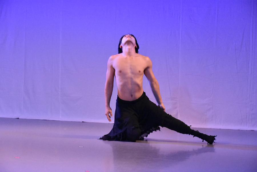 Swan舞踊㈰