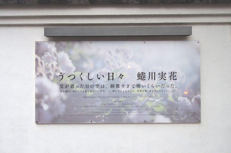 蜷川実花 うつくしい日々 原美術館 蜷川幸雄 写真展